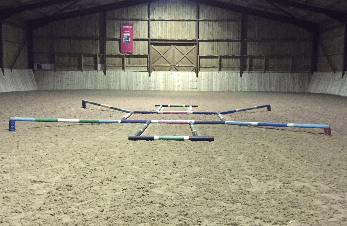 Training at Collective Equestrian Short Courses at Collective Equestrian