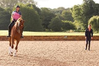 Elizabeth Allen - Collective Equestrian