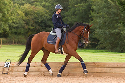 Alex Harrison - Collective Equestrian